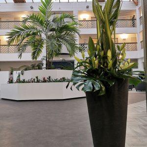 Préparatifs évènement professionnel grandes compositions florales à Anglet