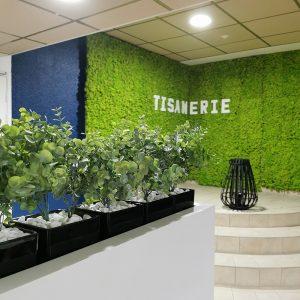 Mur en lichen stabilisé pour sublimer la décoration d'intérieur d'une tisanerie à Anglet